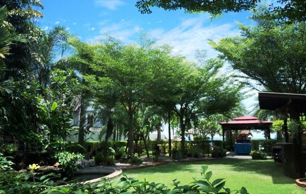 The Everlush garden